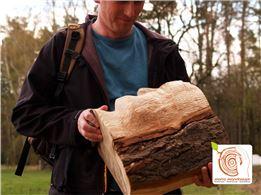 3 Tage - Bildhauerkurs mit Holz (K1)