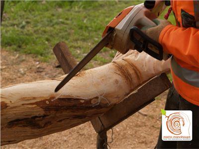4 Bildhauerkurse mit Holz K2 mit Kettensaege und klassischen Werkzeugen bei Mario Mannhaupt.