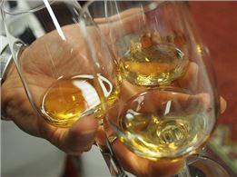 Whisky-Tasting für Einsteiger mit 4-Gang-Menü