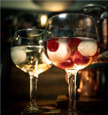 Gin & Tonic Tasting