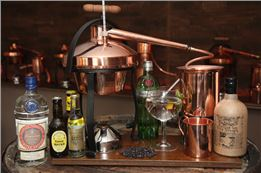 Gin selber destillieren als Hobby - großes Gin-Seminar VILS
