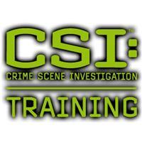 CSI: Training Level 1 - 5 Stunden Workshop