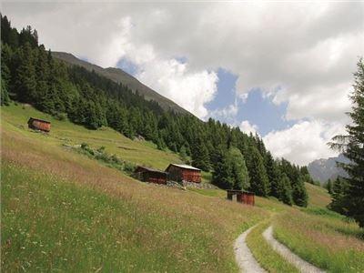 Bergmahder - Niederthai