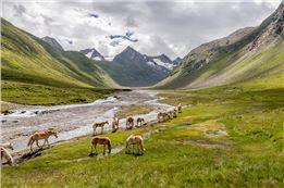 19 Obergurgl - Gletscher erleben (Rotmoosferner)