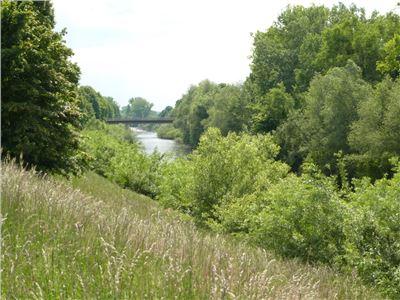 Natur pur entlang des Neckars