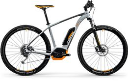 E-Mountainbike Verleih